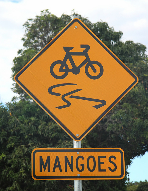 On a positive note, no killer bicycle mangos...